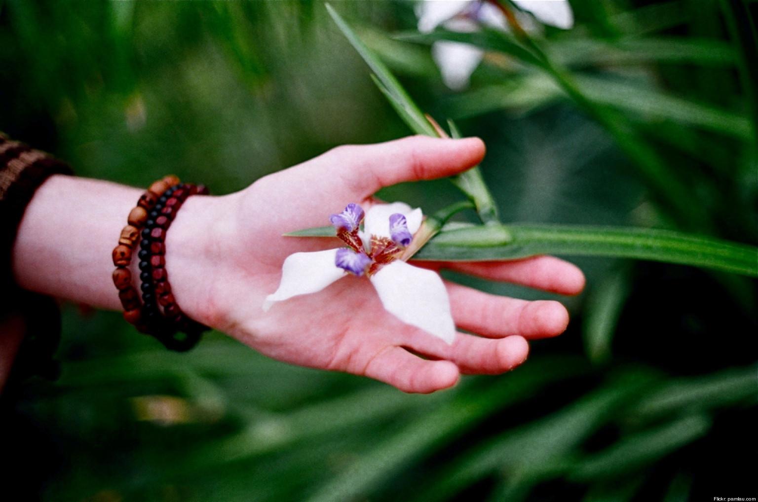 Guide To Gratitude