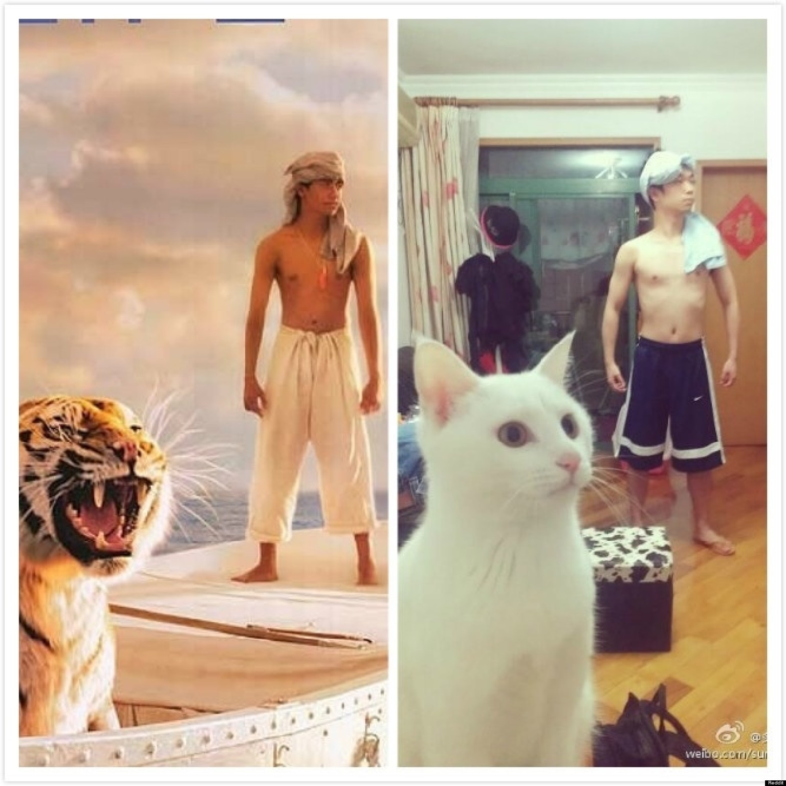 Life Of Pi Movie Poster Remake Is Close Enough Photo