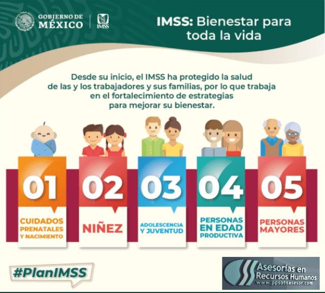 plan #IMSS