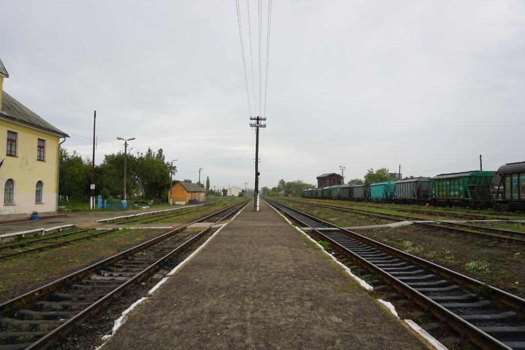 DSC09079