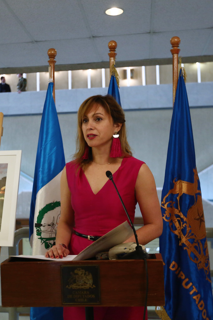 DIPUTADA CARVAJAL SOLICITARÁ QUE MINISTRO ESPINA y FFAA EXPLIQUEN HOMENAJE NO AUTORIZADO.