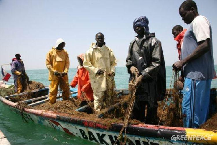 Un viaje virtual por los siete pecados ambientales en África. 1: Sobrepesca en Senegal