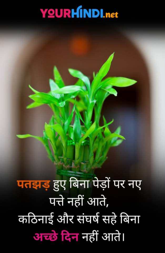 Motivational Shayari For Students