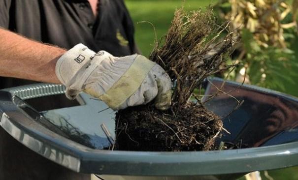выбирая измельчитель для веток, важно, чтобы садовые электрические модели имели возможность настройки степени измельчения