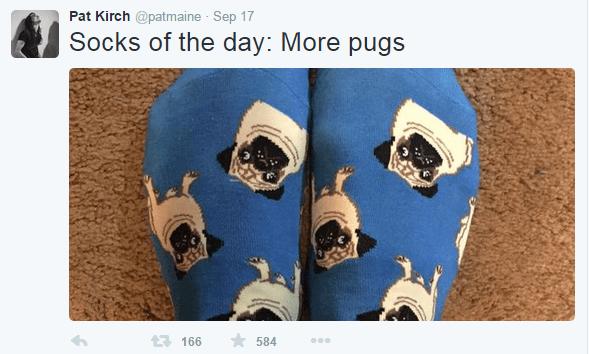Pat_Pugs