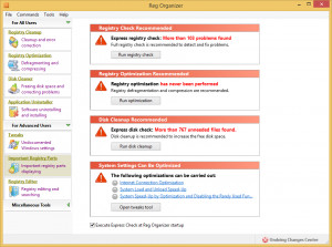 Reg Organizer Portable náhled pro download