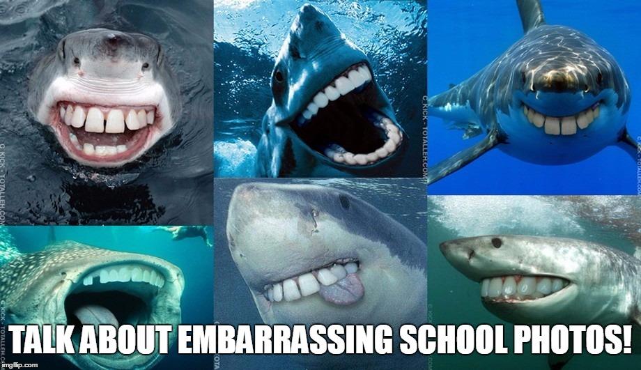 Image of: Dental Sharks With Human Teeth Imgflip Sharks With Human Teeth Imgflip