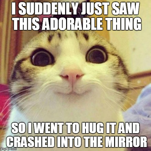 Smiling Cat Meme Imgflip