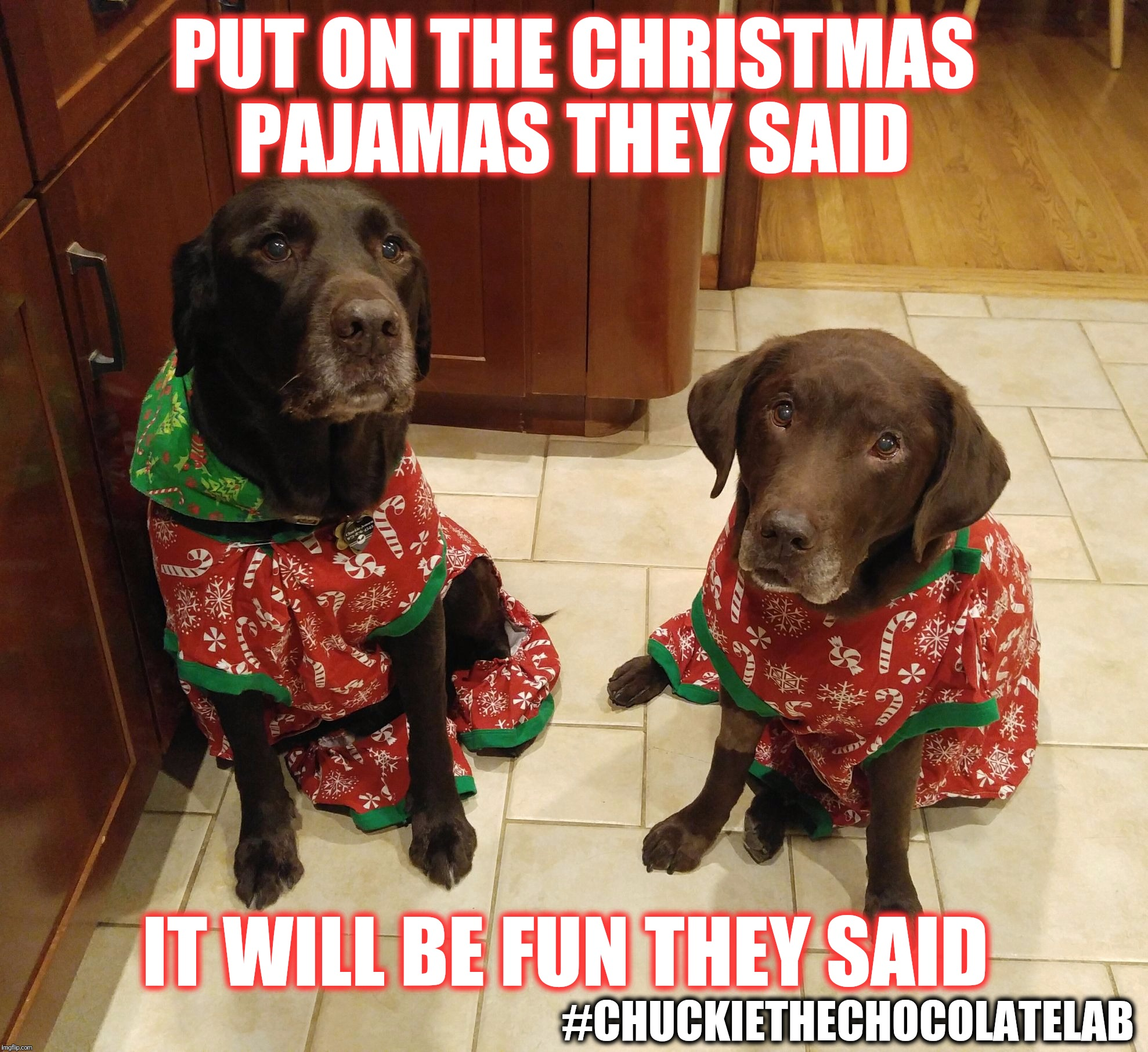 Put On The Christmas Pajamas They Said It Will Be Fun They