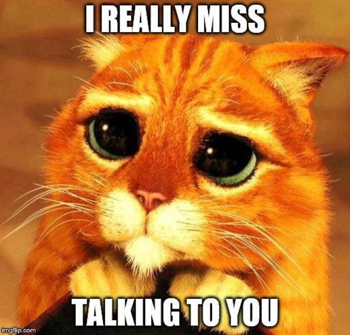 I Miss Talking To You Meme