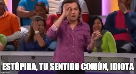 ESTÚPIDA, TU SENTIDO COMÚN, IDIOTA   image tagged in estupida,mi pelo,idiota   made w/ Imgflip meme maker