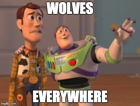 WOLVES EVERYWHERE | Generated image from memes,x x everywhere generated with the Imgflip Meme Generator