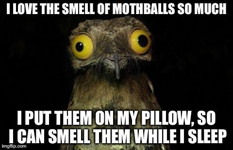 Actually weird stuff I do pootoo