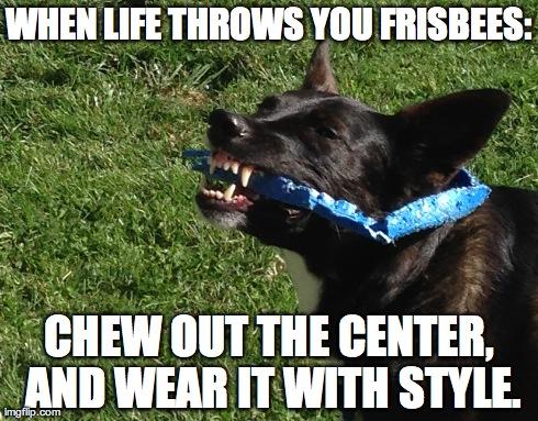 Phoebe's Wisdom