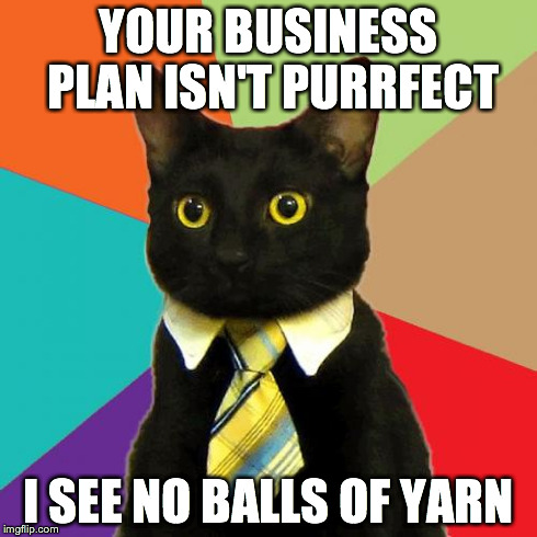 """Cat meme """"Your business plan isn't purrfect, I see no balls of yarn"""""""