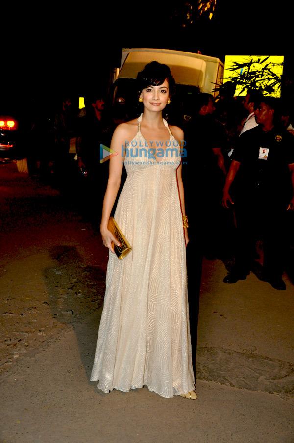 Dia Mirza at 55th Idea Filmfare Awards 2009