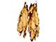 Encyclopedia: tobacco
