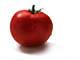 Encyclopedia: tomato