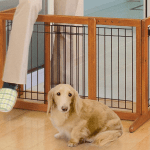 The Best Dog Gates You Can Buy To Keep Your Pets Safe Indoors Business Insider