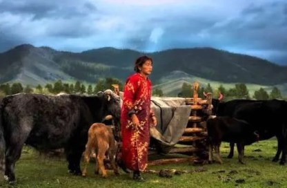culture/mongolians-fear-for-their-cultural-heritage