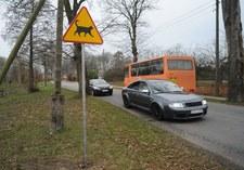 Zachodniopomorskie: Przy drodze stanął nietypowy znak
