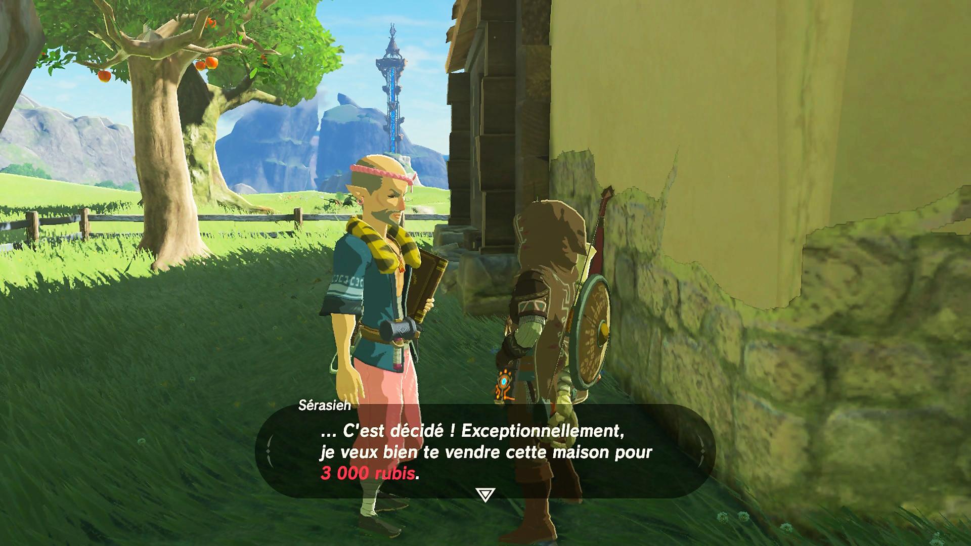 Zelda Breath Of The Wild La Soluce Pour Acheter Une