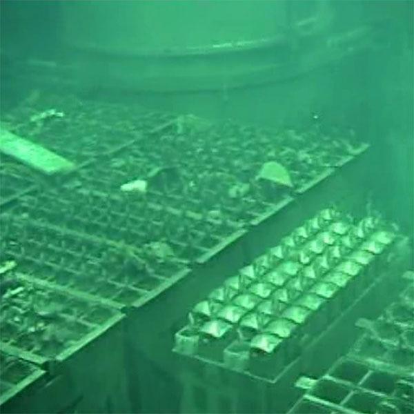 Nhiên liệu trong bể chứa gần lò phản ứng số bốn được di dời năm 2014