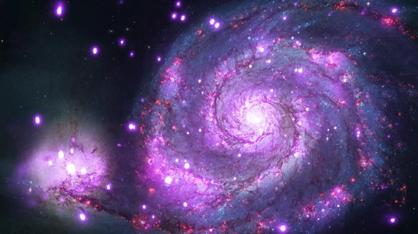 Black Holes and Neutron Stars in the Whirlpool Galaxy