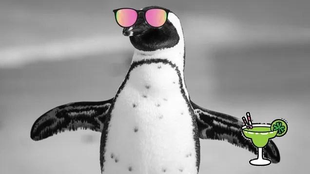a1l8hqdypweq8zzb8cky It's Straight Up Balmy in Antarctica | Gizmodo
