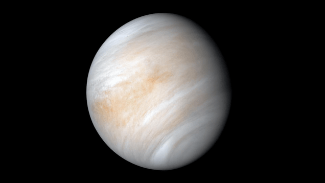ffhuifwj69ihfwqzt2jn Now That Venus Is a Candidate for Alien Life, What's Next? | Gizmodo
