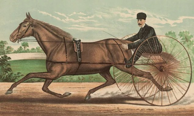 In 1893, 2.5 million pounds of horse manure filled NYC streets per day