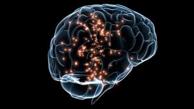 Image result for brain training