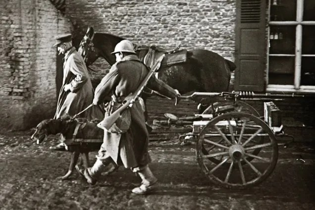 These Unseen Photos From World War I Are Unbelievable