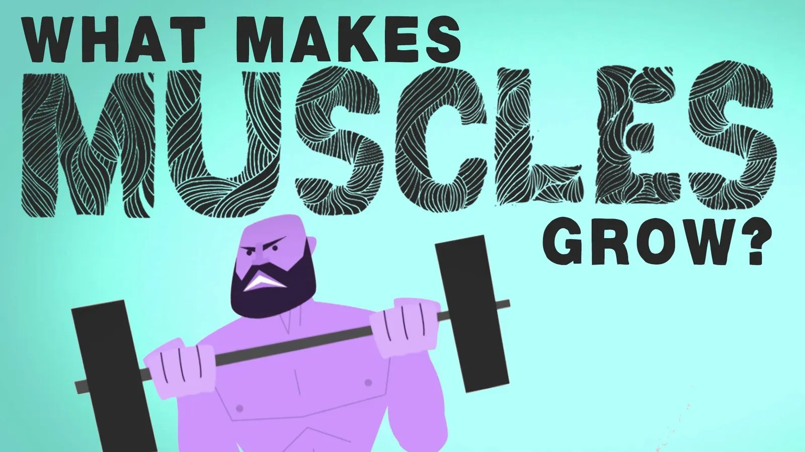 What Makes Your Muscles Grow And How They Grow Stronger