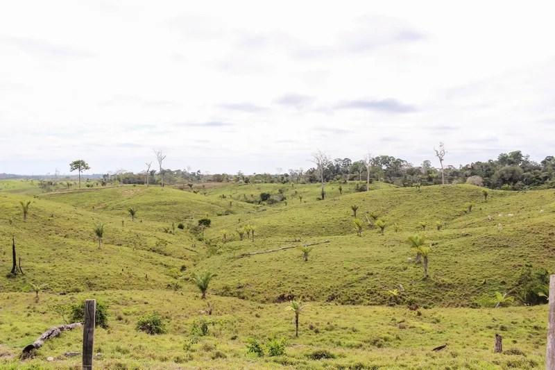 Cómo una leyenda de mi abuelo me llevó a encontrar un río hirvienteen la Amazonía de Perú