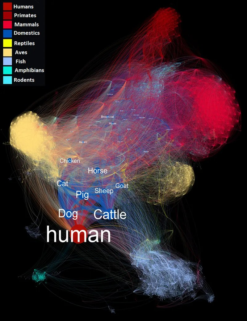 This Jaw-Dropping Visualization Shows the Extent to Which Diseases Spread Among Species