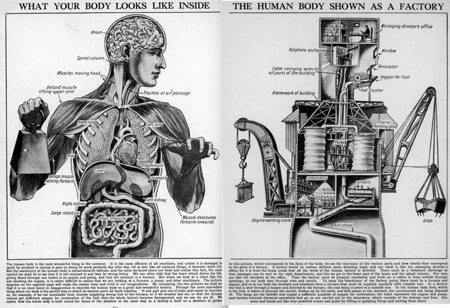 Your Body, the Machine... Literally