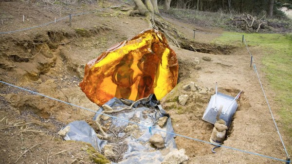 Geologists Uncover Slab Of Amber Containing Perfectly ...