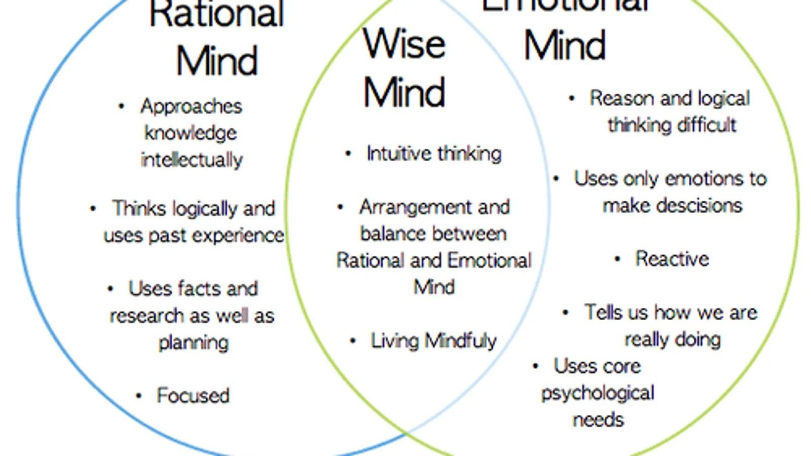 Dbt 22 Wise Mind