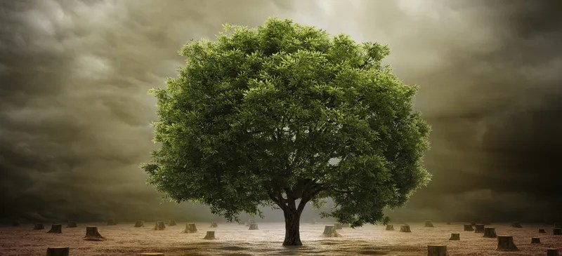 Scientists Have Drafted a Complete Tree of Life