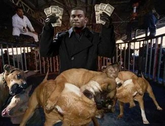 Image result for michael vick arrested