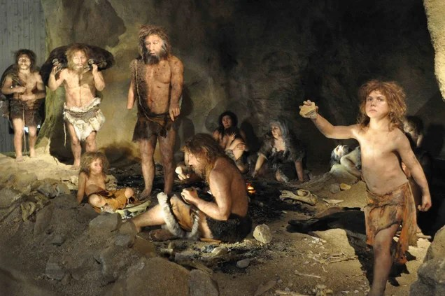Why Does It Matter If Homo sapiens Had Sex With Neanderthals?
