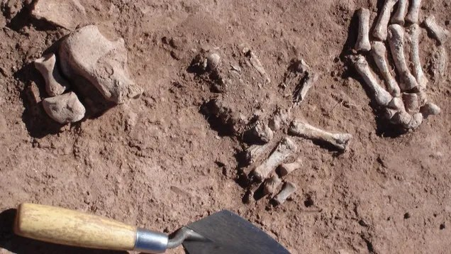 Ancient Bolivians Used Basic Chemistry To Strip Flesh From Human Bones