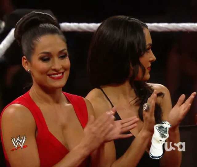 Illustration For Article Titled The Wwe Needs Better Wardrobe People Nsfw The Bella Twins