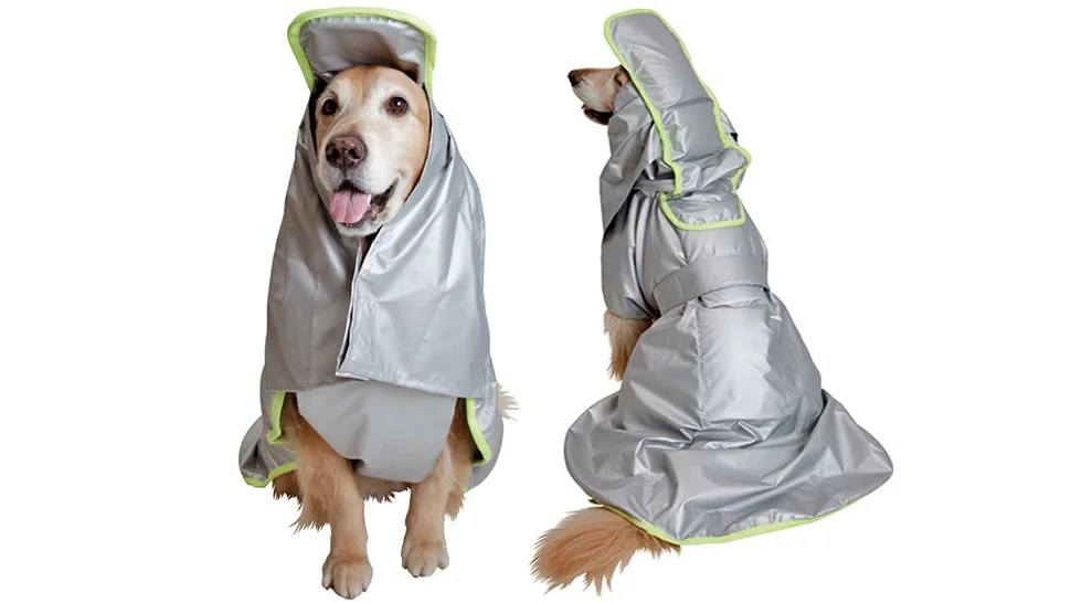 Fire and Shockproof Coats Protect Your Pooch During a Natural Disaster