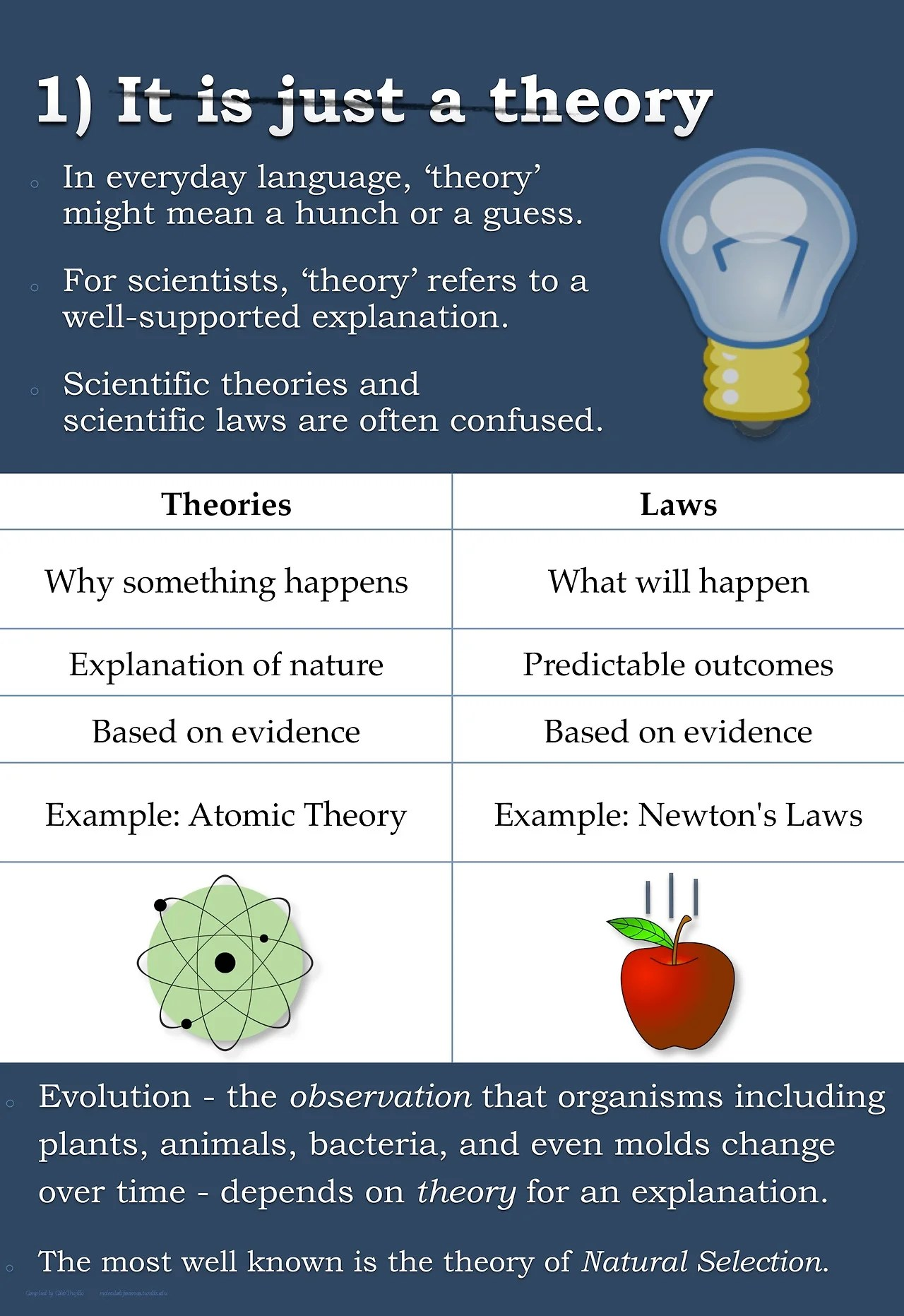 Top Five Misconceptions About Evolution According To