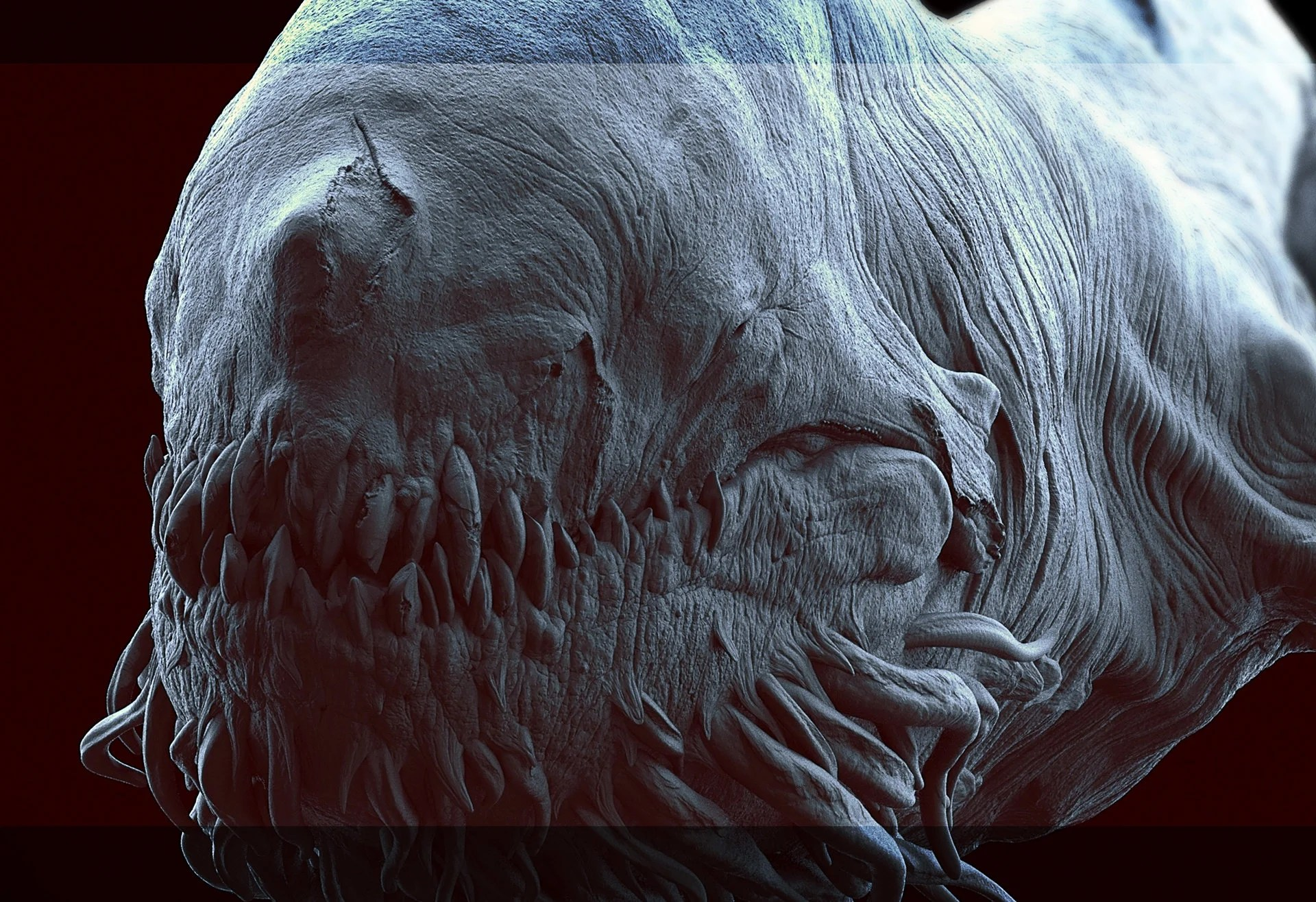 Fine Art Concept Art From That Incredible Space Whale