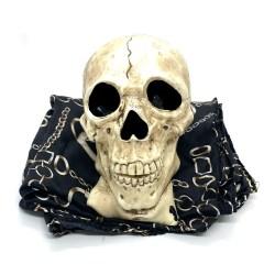 Фокус Летающий череп   Zombie Skull