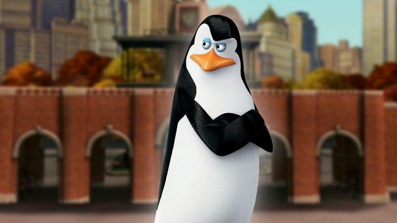 Penguins Madagascar Skipper Memes