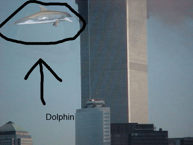 The Horrible Truth Behind 911 DOG False Flag Op Shocking Photo Evidence Dolphin Conspiracy